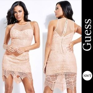 NWT Guess Women's Sleeveless Raven Lace Dress